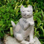 猫寺と治左川井戸に行ってきた。
