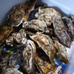 牡蠣祭りと近況