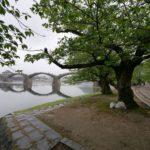 錦帯橋に行ってきた(平成最後の西日本ツアーその5)